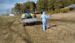 В Акмолинской области выявлен опасный район, где появились зараженные клещи