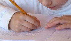 По каким причинам ребенок может перейти на домашнее обучение