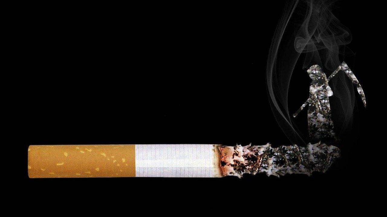 покупка табачных изделий документы