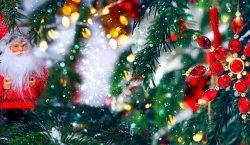 Сколько миллионов потратят казахстанские акиматы на празднование Нового года?