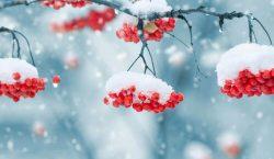 Прогноз погоды в Казахстане на 16 января