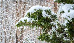 Снег, метель и мороз: штормовое предупреждение объявлено в Казахстане